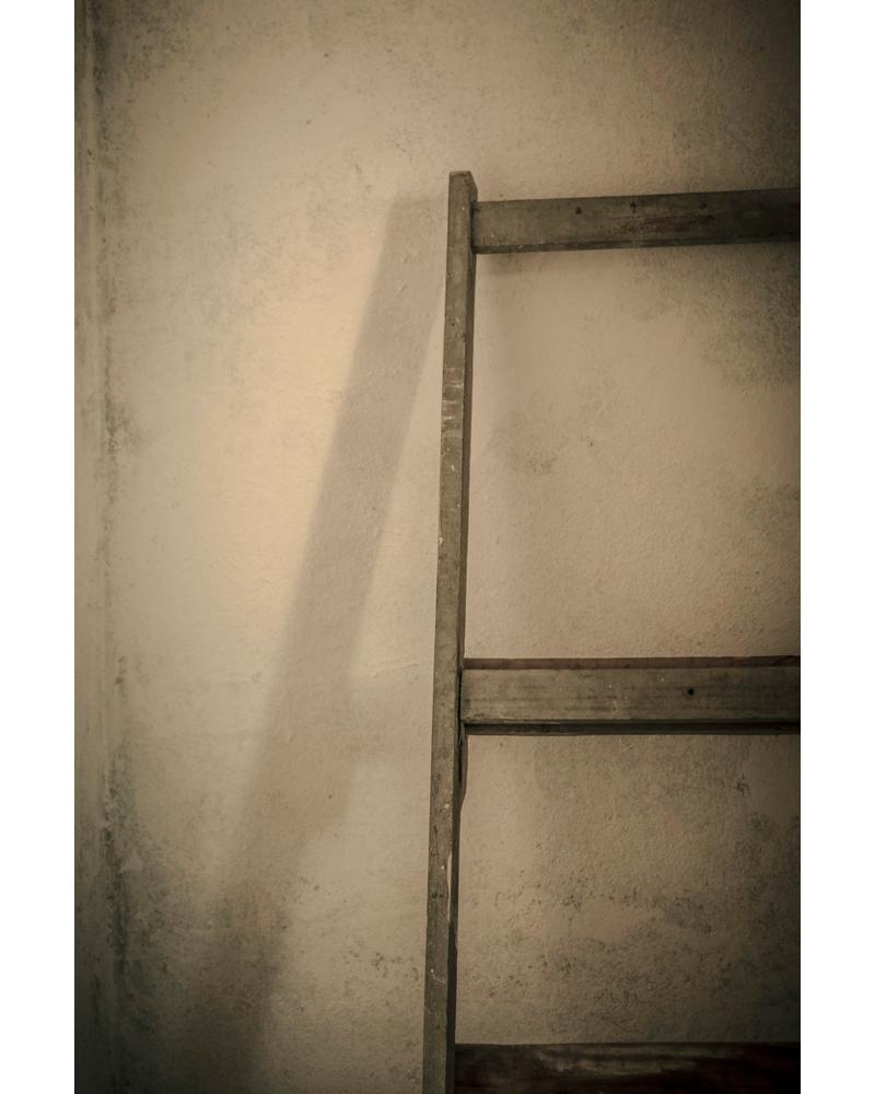 CASTUS2016_04